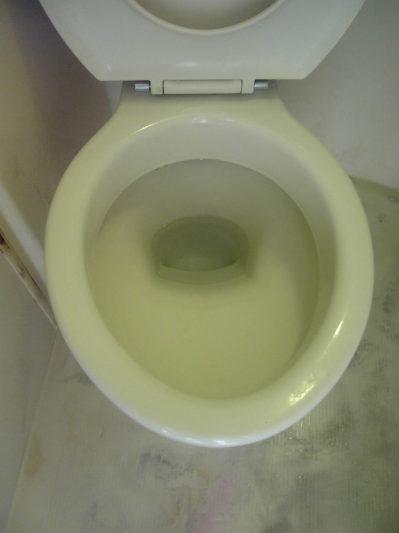 クリーニング後のキレイなトイレ