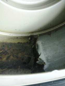 シロッコファンのケース内部の油を取り除いている様子