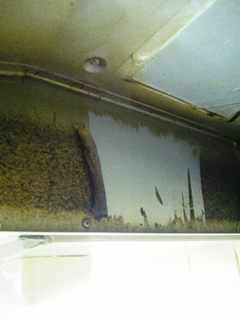 フードカーバーの油を落としている様子